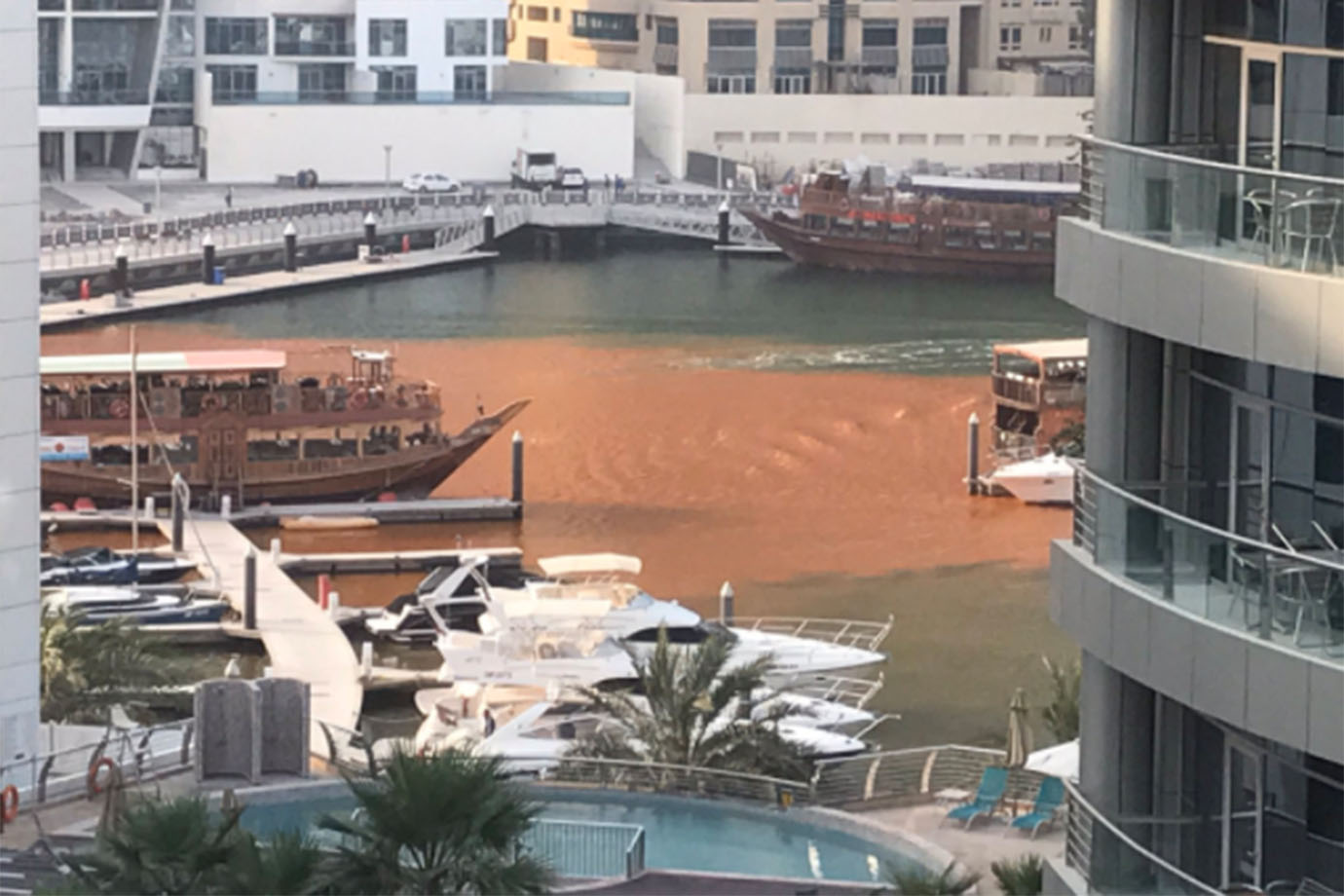 The waters in a section of Dubai Marina have turned red.