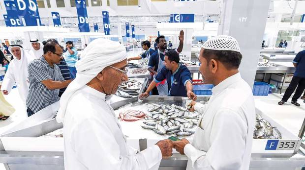 Dubai 39 s waterfront market too pricey fish vendors say for Closest fish market