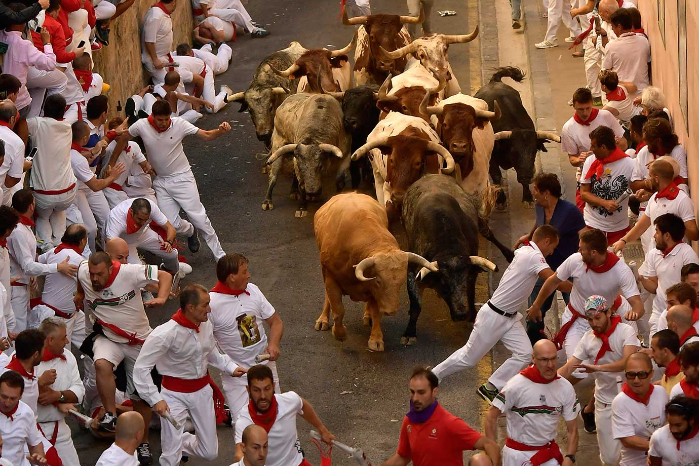 an analysis of the spanish culture and the running of the bulls at the fiesta de san fermin The festival of san fermín, or the running of the bulls as it's more commonly  known outside spain, officially begins at midday on 6th july every year with the.