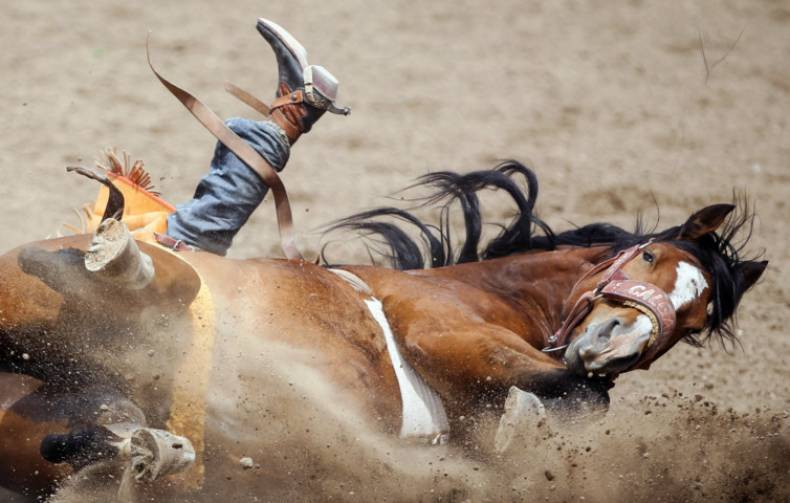 copy-of-aptopix-calgary-stampede-rodeo-33771-jpg-ea9f7