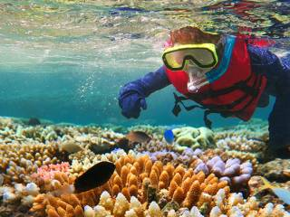 Top 8 snorkelling destinations