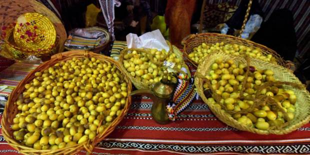 Hundreds visit Liwa Date Festival on first day