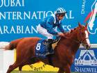 All eyes on Dubai International Arabian Races