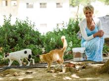 This woman prefers saving cats to costly gifts