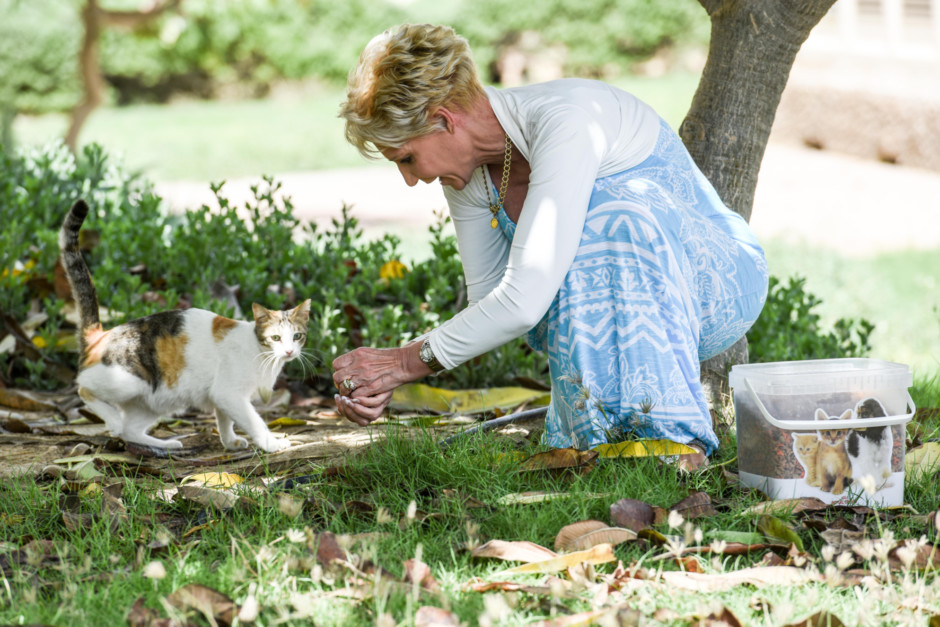 NAT_160329_Expat who helps Cats_AKK-6