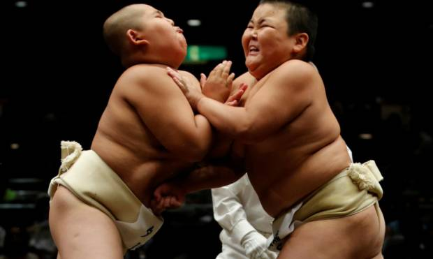 The next big boys of sumo wrestling
