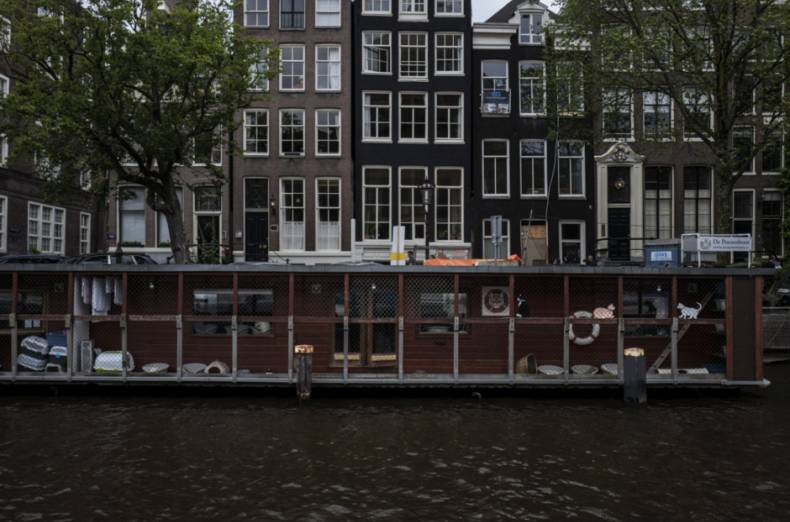 copy-of-netherlands-boat-for-cats-photo-gallery-39513-jpg-11845