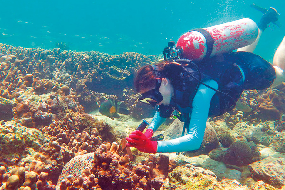 NAT_170810 Coral Reefs Research at NYUAD