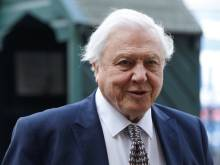 David Attenborough gets a theatrical homage