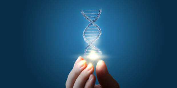 Will DNA results change you? Science says no