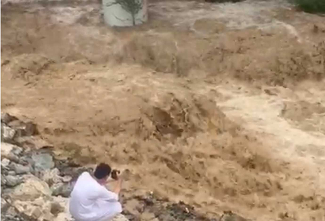 Rains have housed areas in the UAE's east coast