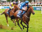 Harry Angel can fly home in Sprint Cup
