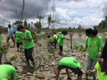 Students attempt to save mangrove forest
