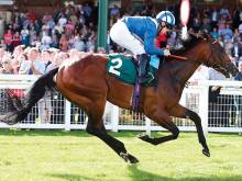 Hamdan could pull off Group race double