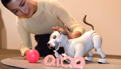 Sony revives robotic pet dog with AI