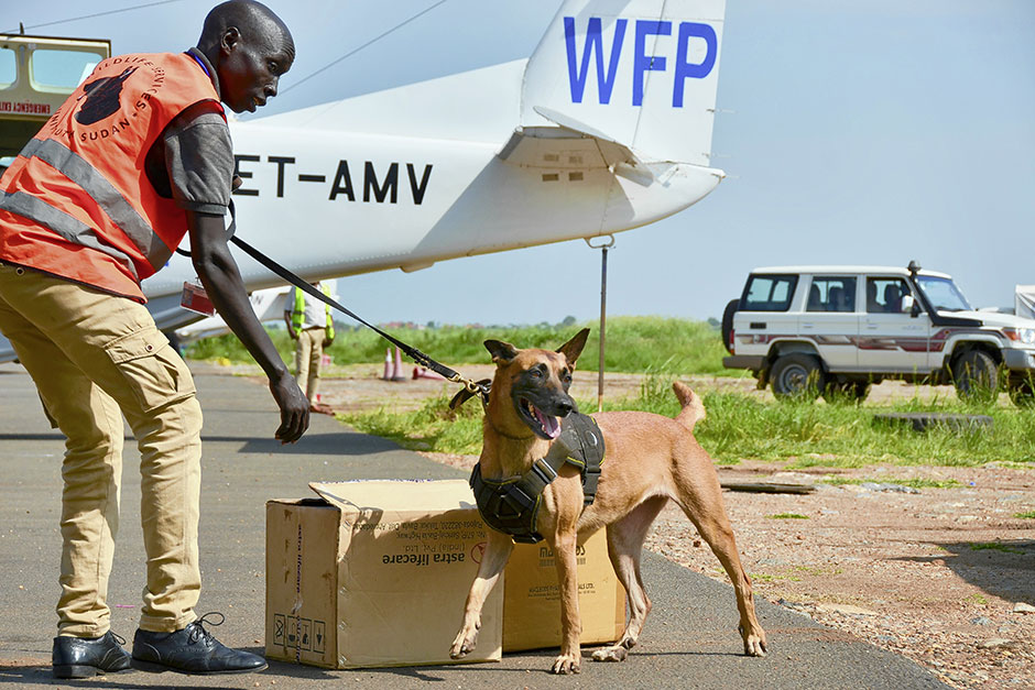 A counter-trafficking sniffer dog