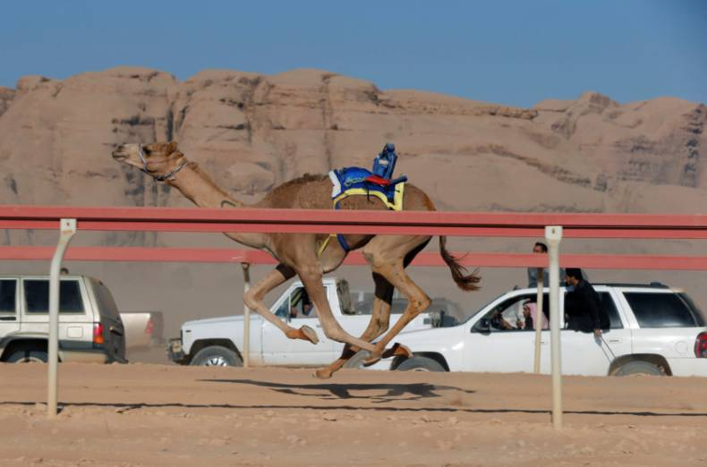 copy-of-2017-11-02t115210z-1097846817-rc192f127a00-rtrmadp-3-jordan-camelrace
