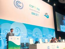 UAE makes strides in combating climate change