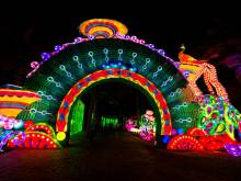 The making of Dubai Garden Glow