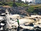 Mysterious foam on Jumeirah Islands lake