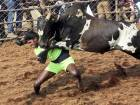 Copy of India_Bull_Taming_Festival_51556.jpg-86e5d