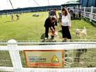 New dog park opens in Sustainable City
