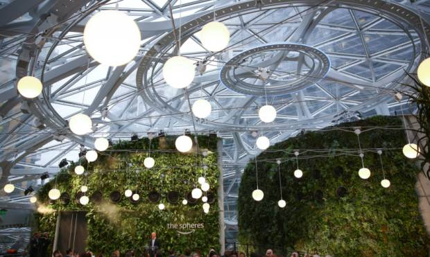 Inside Amazon's plant-filled 'Spheres' complex