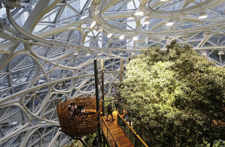 copy-of-amazon-spheres-37116-jpg-0d93f-1