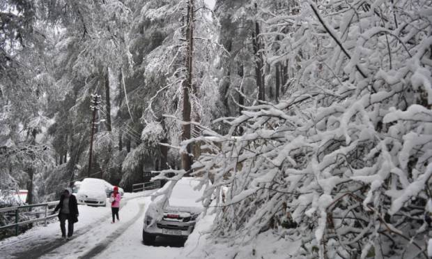 A spell of fresh snow turns Shimla picturesque