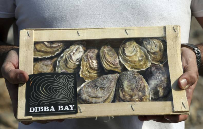 copy-of-emirates-oysters-20667-jpg-01fb9-1