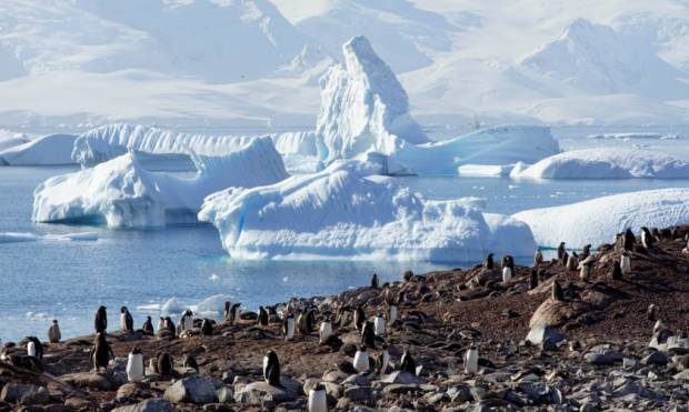 An expedition to magical Antarctica