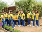 The students harvested about 40kg of fresh vegetables.
