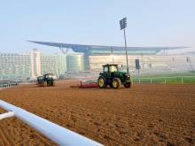 Dubai World Cup hotshots get down to work