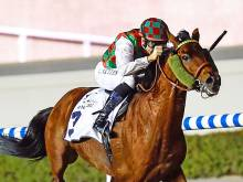 Ziyaad to build on recent course win at Meydan