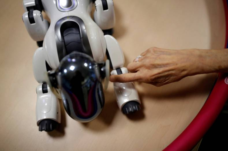 copy-of-2018-03-27t232257z-574520671-rc131213cca0-rtrmadp-3-japan-ageing-robots