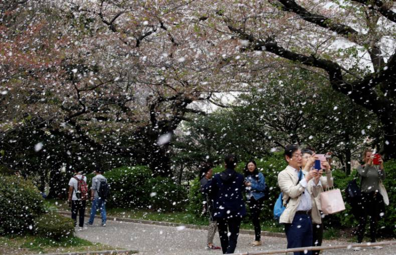 copy-of-2018-04-02t083703z-1855350060-rc1976121820-rtrmadp-3-spring-cherryblossoms-japan