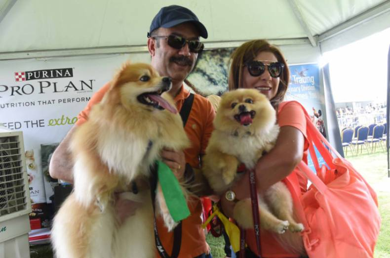 nat-pet-fest-pic333