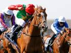 Godolphin sound out warning to rivals