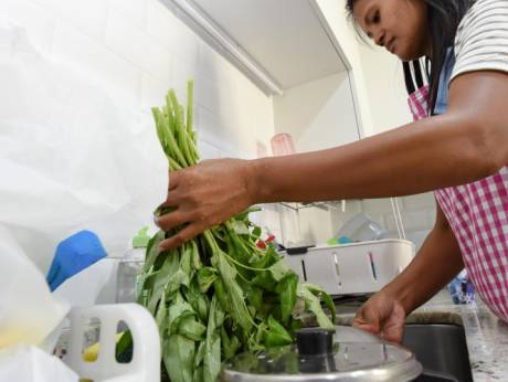 Homemakers. housemaid to be trained for handling food safely