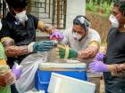Nipah: Residents asked to avoid Kerala trips