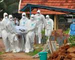 Third Indian state checks for Nipah cases