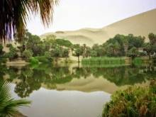 Al Ahsa Oasis in KSA: What makes it special