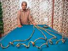 Shridhar Chillal, from India officially has the world's longest fingernails.