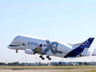 Watch: Beluga XL, the new 'whale in the sky'