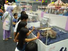 Children learn about wildlife protection