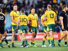 Cheika steels forwards in bid to end woe