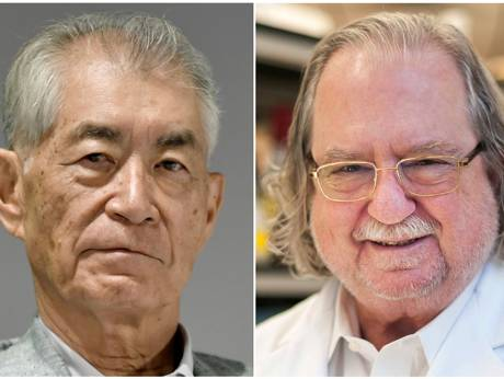 Cancer immunotherapy researchers win Nobel Prize