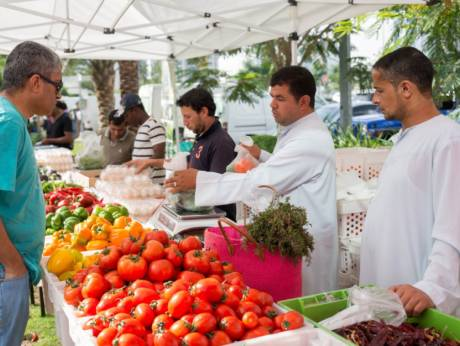 Farmers Market is back at Bay Avenue
