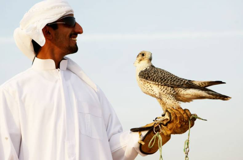 ajtebi-at-his-family-s-farm-in-al-habab-with-one-of-his-falcons