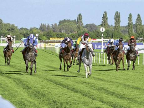 Arabian horses in action at Newbury Racecourse.